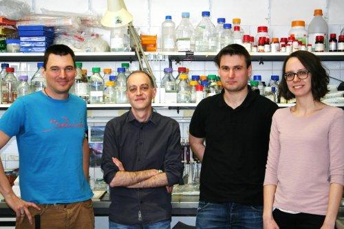 Emilio Casanova Ludwig Boltzmann Institute Cancer Research