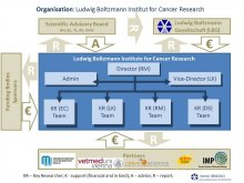 The LBI-CR is supported since its foundation by five Partners with finacial and in kind contributions. In addition the institute receives substantial financial support from the LBG and external funding bodies. The scientific advisory board provides crucial guidance with respect to the research program the institute follows.